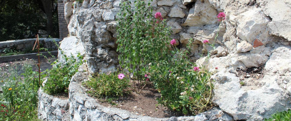 jardins13 placette 1200x500