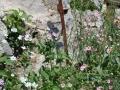jardins10 placette 1200x500