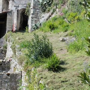 bassins décantation moulins saint-andré de la roche