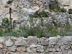jardin4 placette 1200x500