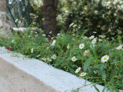 jardins8 placette 1200x500